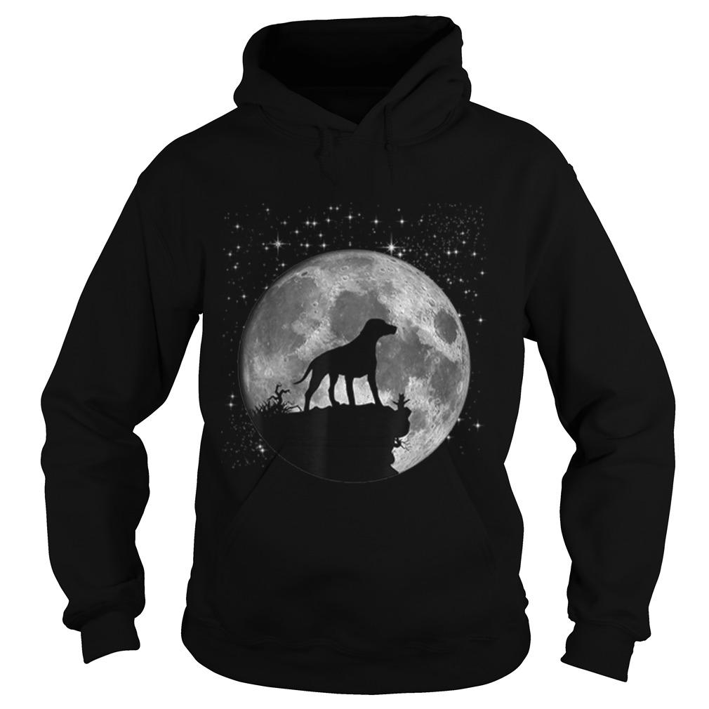 Dalmatian Dog Lover Moon Landing 50th Anniversary Shirt hoodie