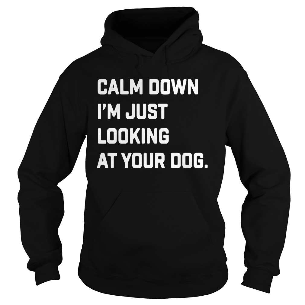 Calm Down I'm Just Looking At Your Dog Shirt hoodie