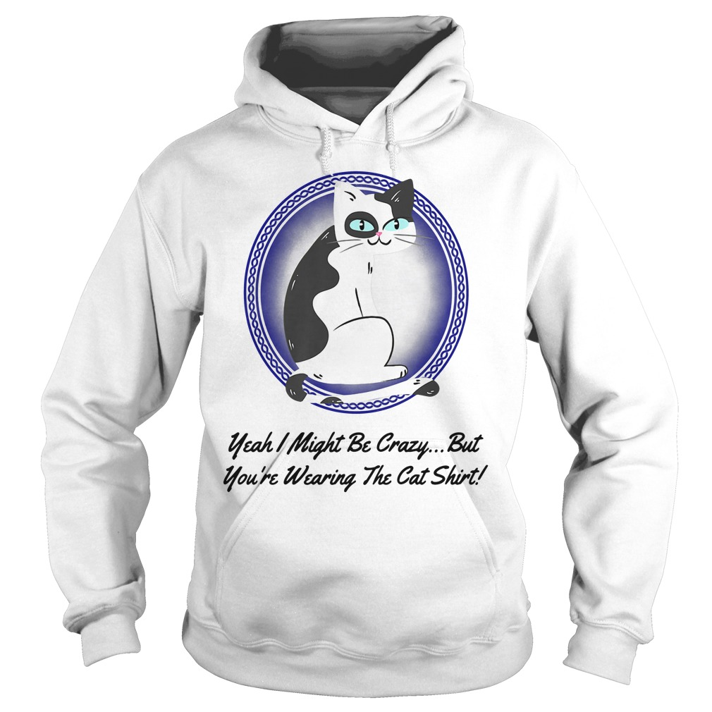 Crazy Cat Yeah I Might Be Crazy But You're Wearing The Cat Hoodie