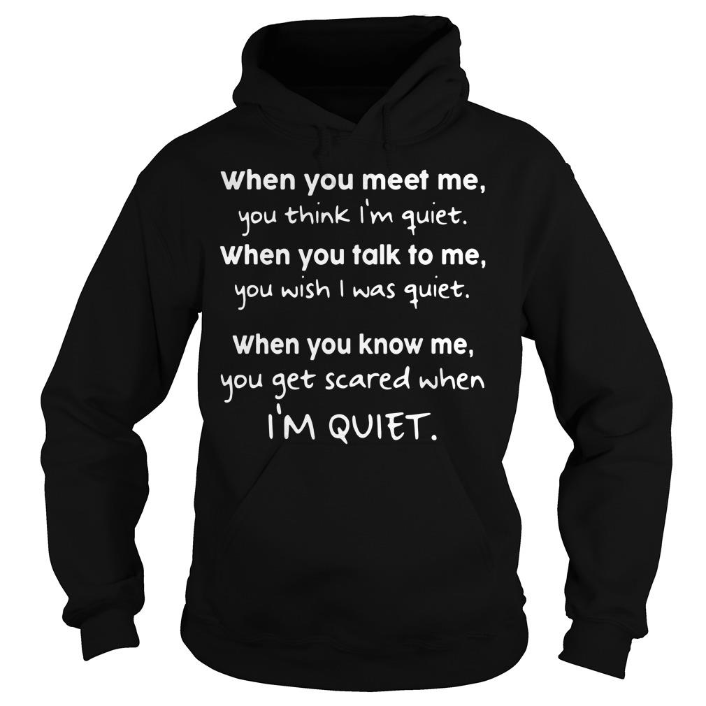 When You Meet Me You Think I'm Quiet When You Talk To Me Shirt hoodie