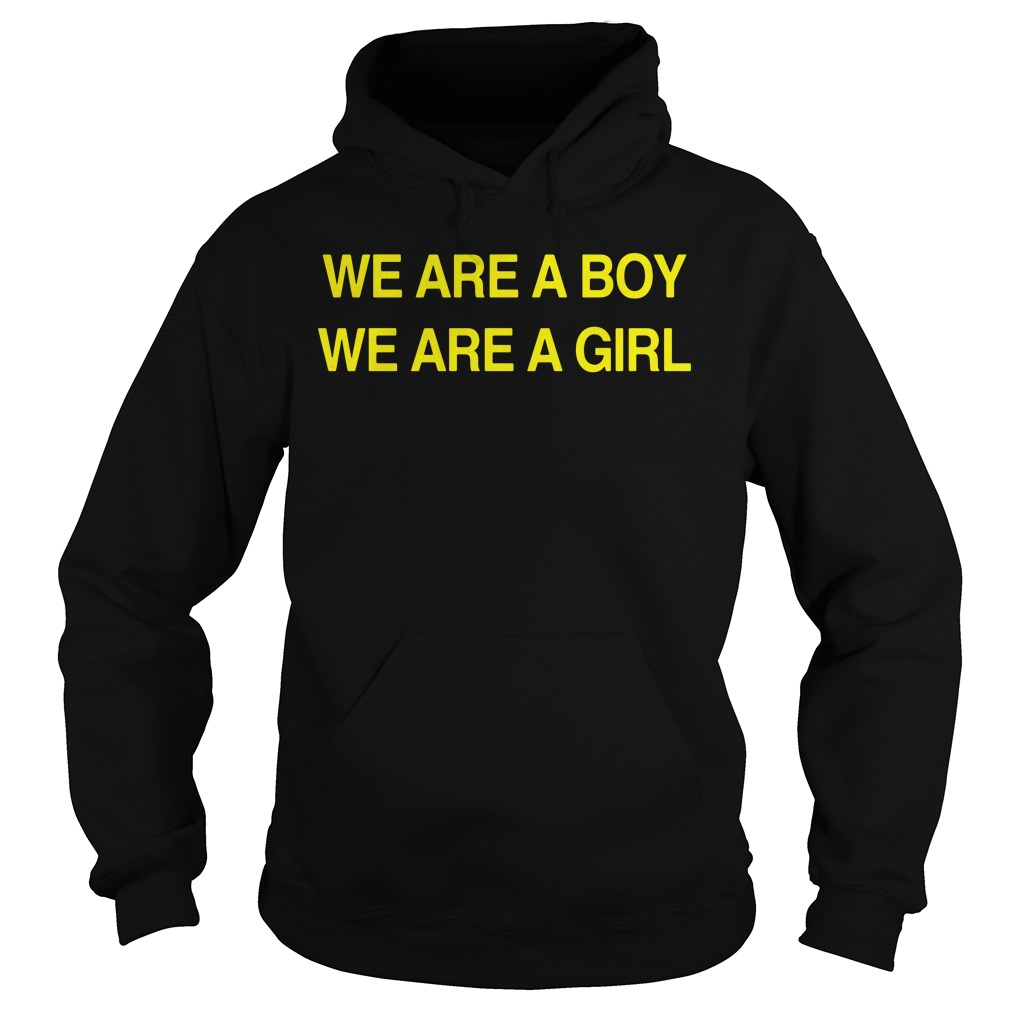 We Are A Boy We Are A Girl Shirt hoodie