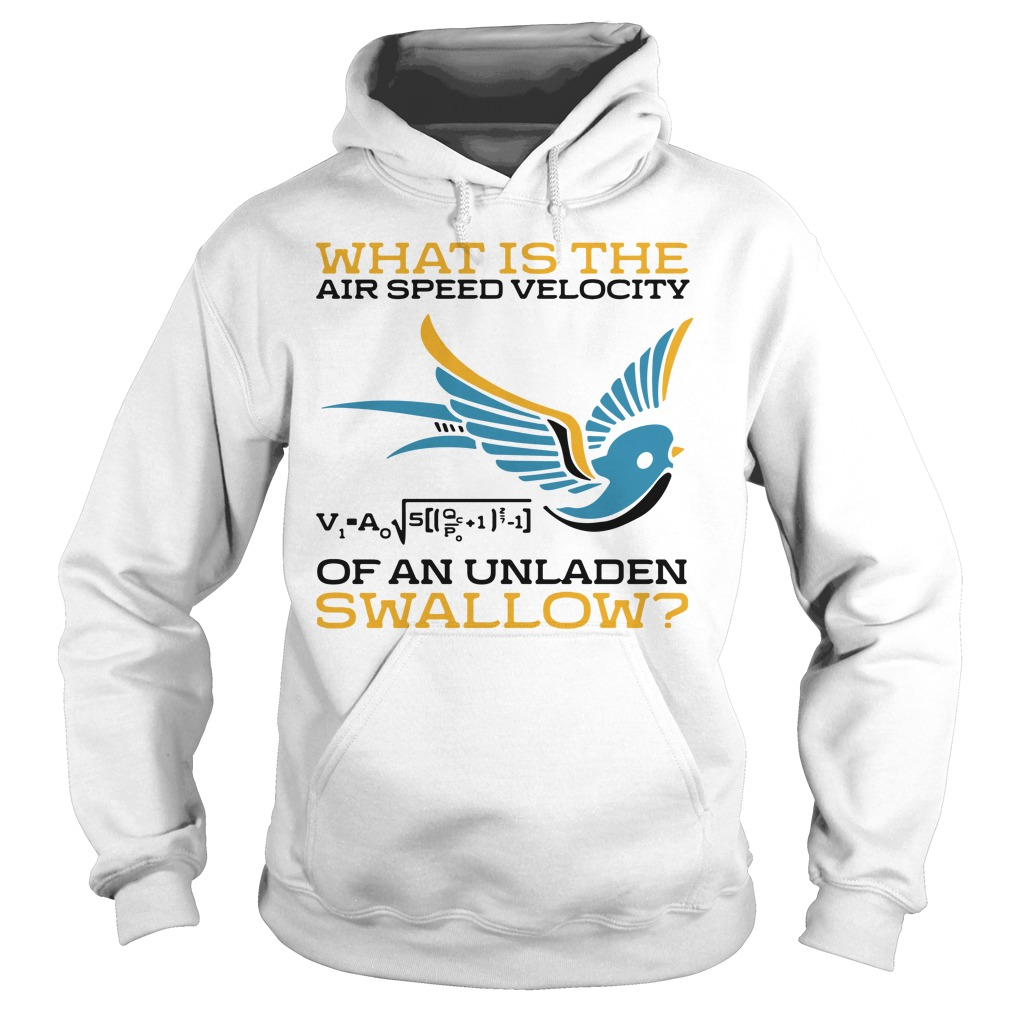 What Is The Airspeed Velocity Of An Unladen Swallow Shirt hoodie