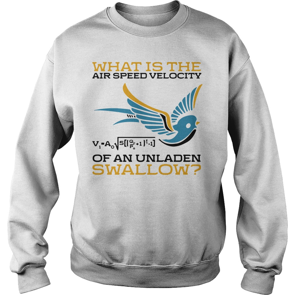 What Is The Airspeed Velocity Of An Unladen Swallow Shirt sweater