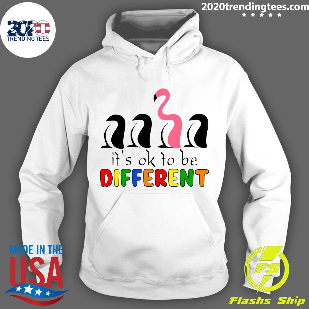 It's Ok To Be Different Baseball Flamingo Shirt Hoodie