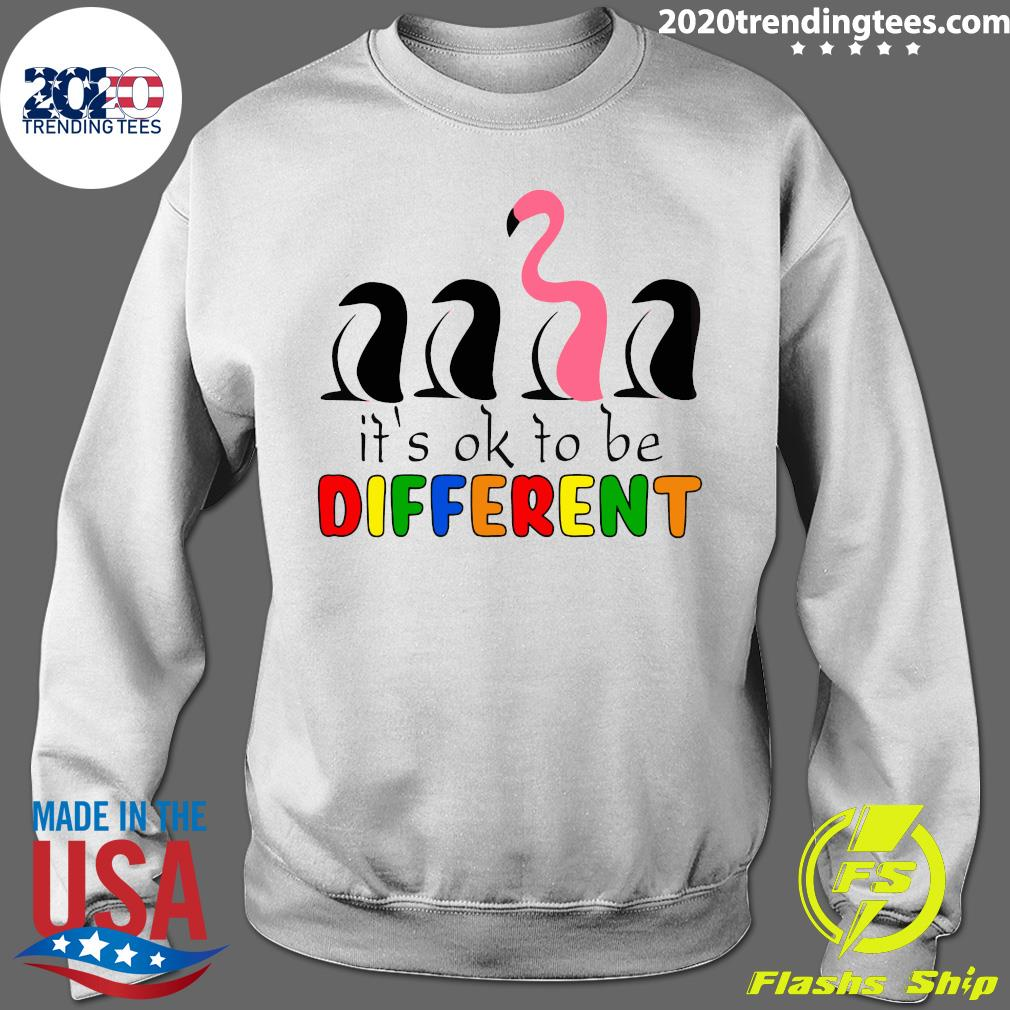 It's Ok To Be Different Baseball Flamingo Shirt Sweater